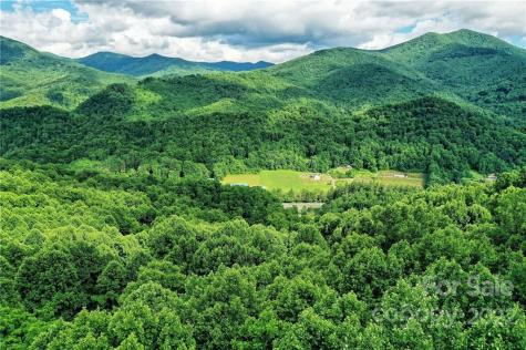 Lot 48 Forest Valley Drive Sylva NC 28779