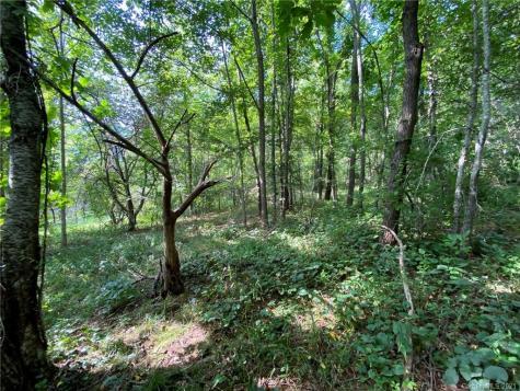 690 Green Mountain Drive Burnsville NC 28714