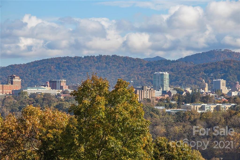00000 Riverview Drive Asheville NC 28806