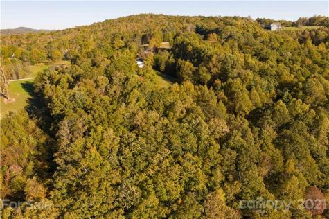 000 Cabbage Patch Road Burnsville NC 28714