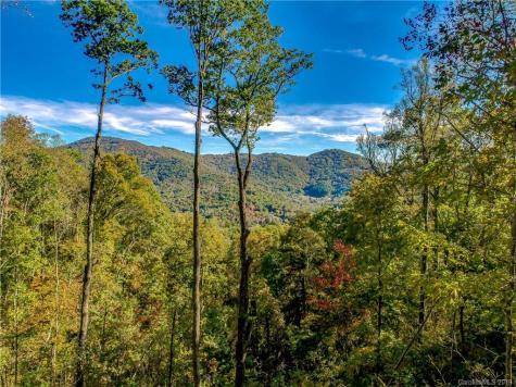 9999 Rambling Ridge Road Asheville NC 28804