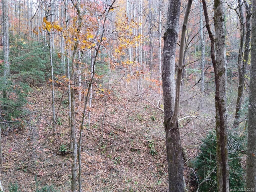 152 Cedar Creek Road Black Mountain NC 28711