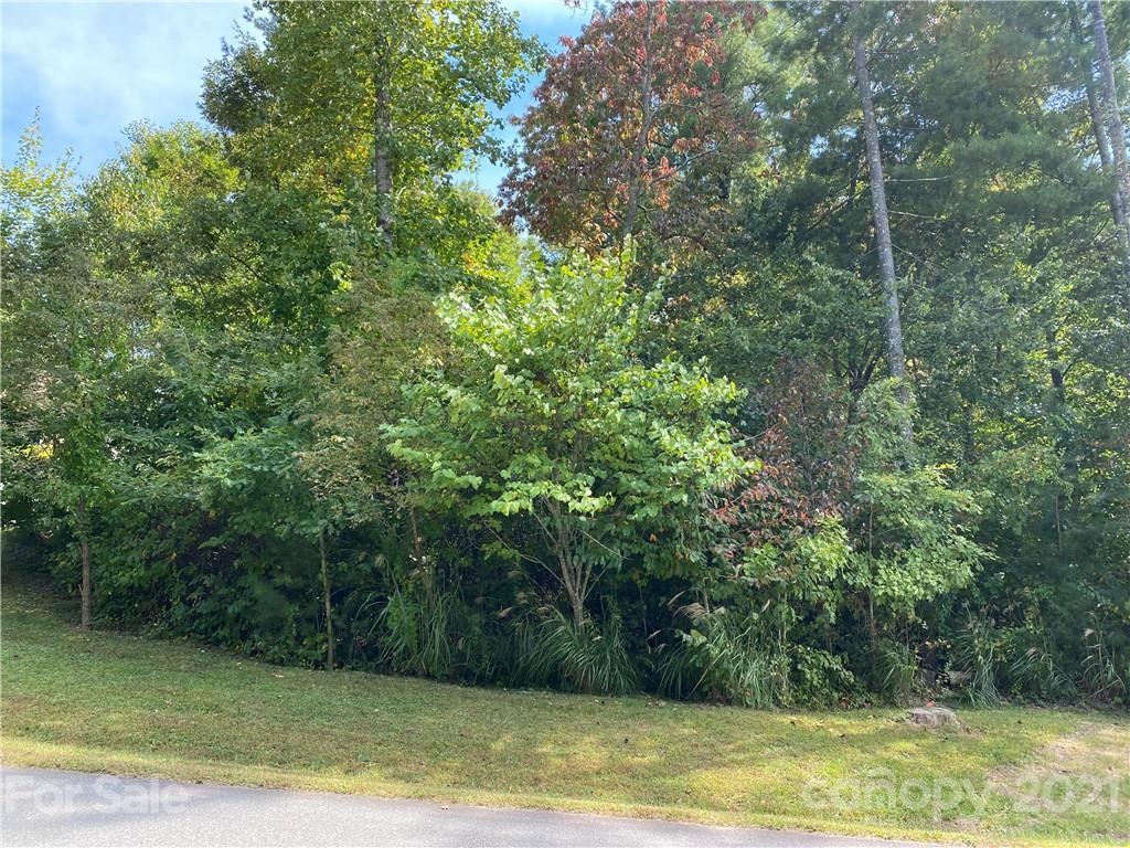 3 Magnolia View Trail Asheville NC 28804