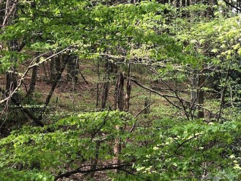 Davenport Road Spruce Pine NC 28777