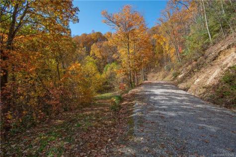 Tract 3 Sigogglin Trail Waynesville NC 28785