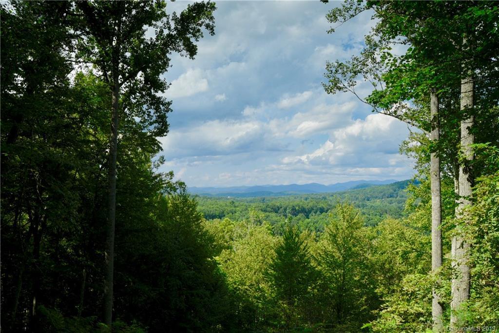 4 Ridge Pine Trail Arden NC 28704