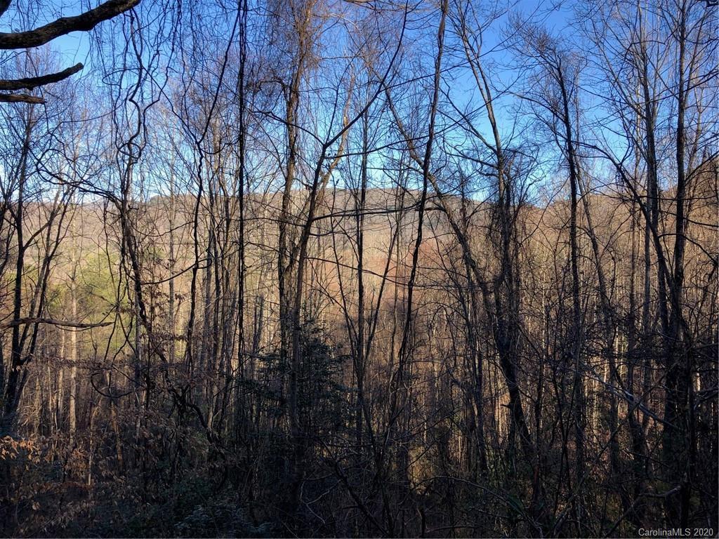 9999 Brush Creek Road Fairview NC 28730