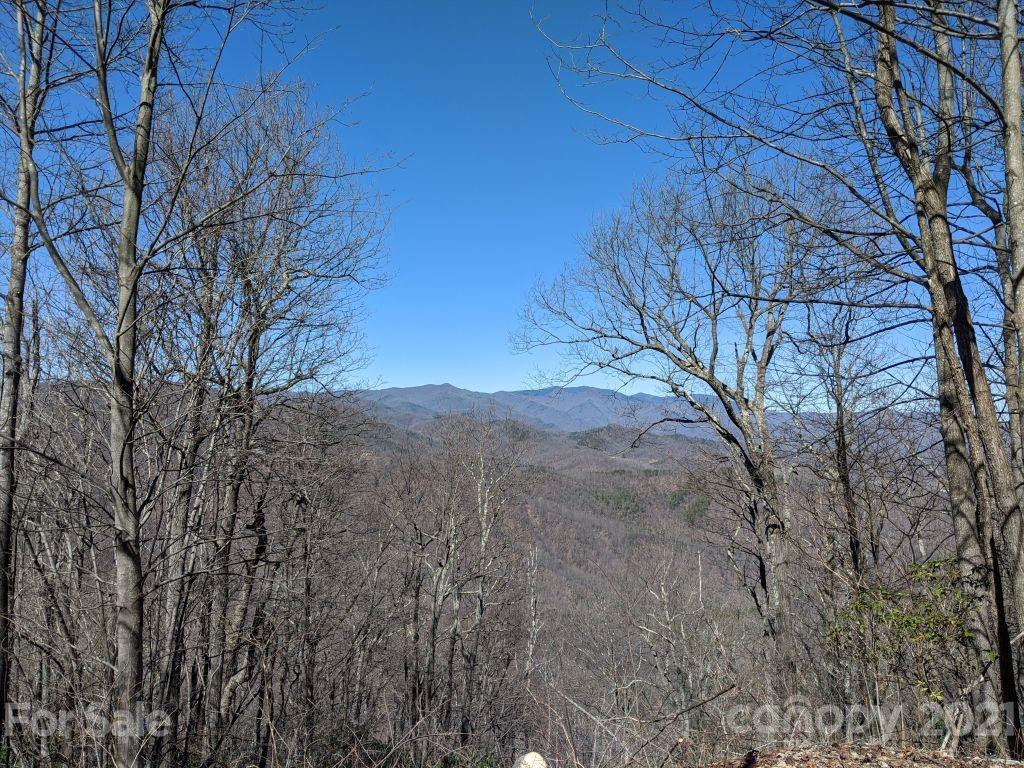 Lot T-66 23 Ninebark Lane Black Mountain NC 28711