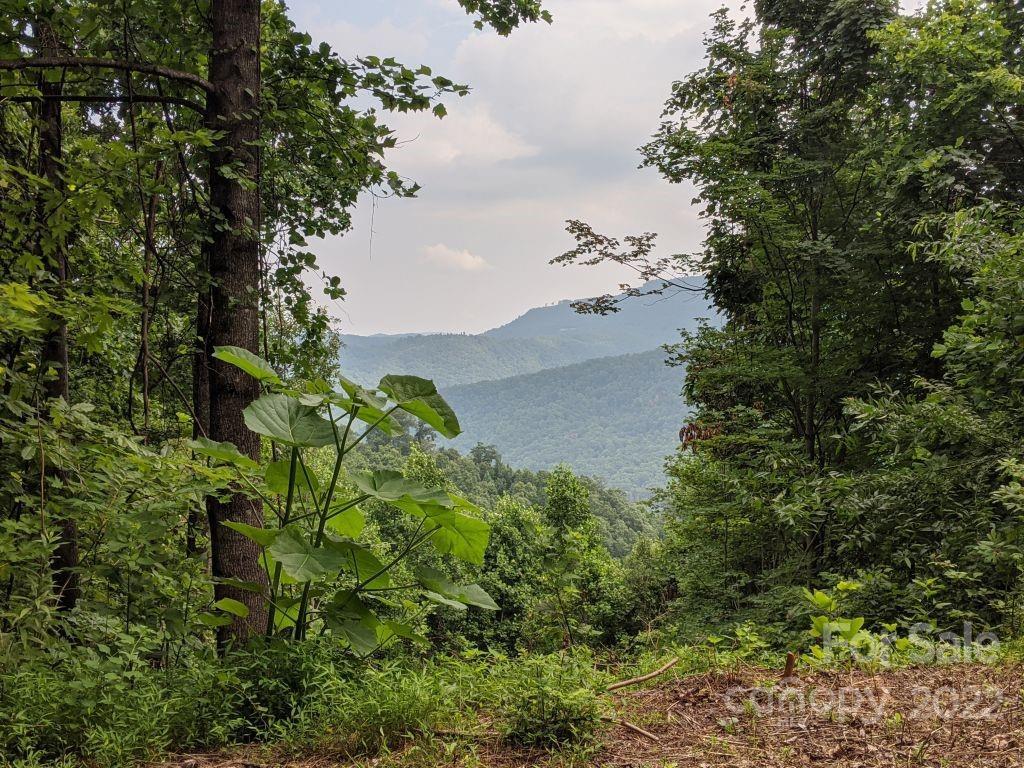 T-62 501 Warbler Lane Black Mountain NC 28711