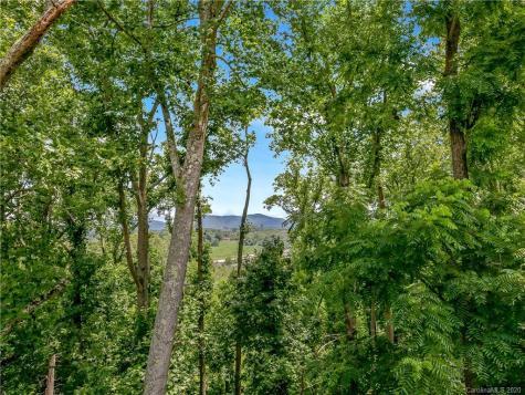 116 Riverview Drive Asheville NC 28806