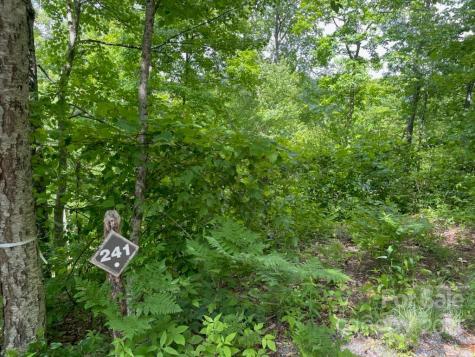 241 Down the Hill Road Sylva NC 28779