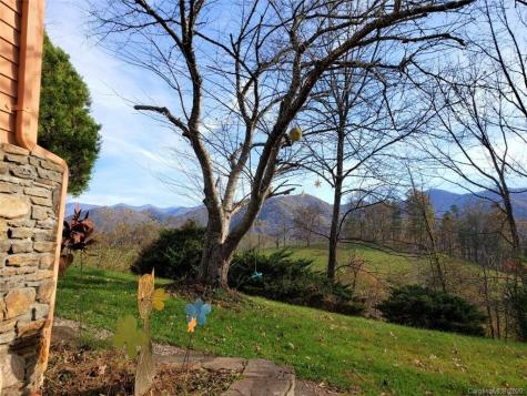 41 Holcombe Branch Weaverville NC 28787