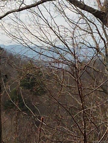 86 Bartrams Walk Drive Asheville NC 28804