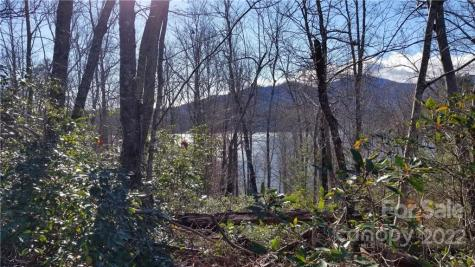 Thomas Drive Lake Lure NC 28746