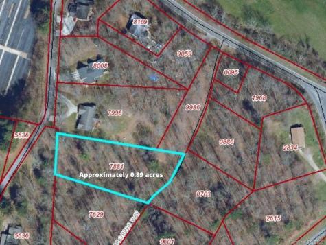 113 Poplar Green Way Asheville NC 28806