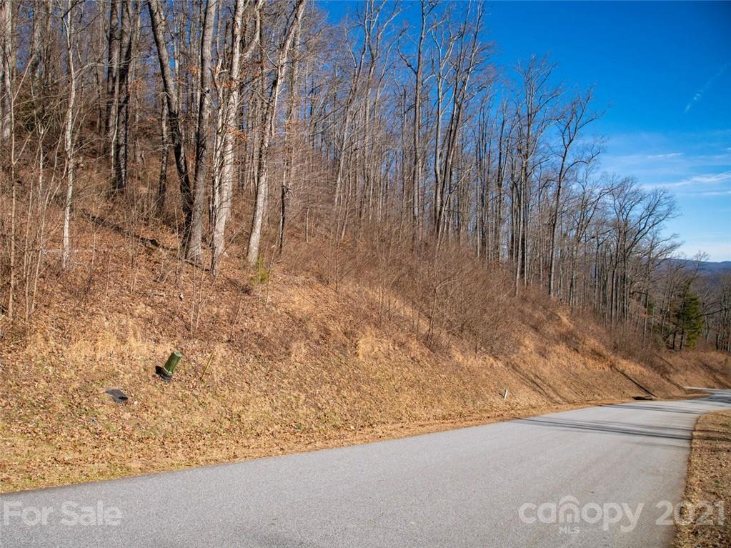 75 Old Forest Drive Asheville NC 28803