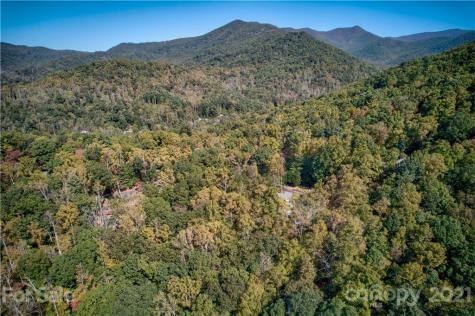 99999 Buffalo Trail Asheville NC 28805