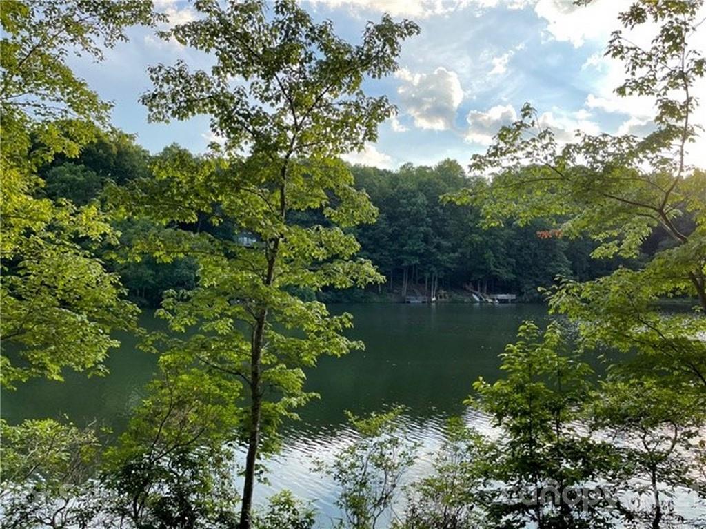 1733 Buffalo Creek Road Lake Lure NC 28746
