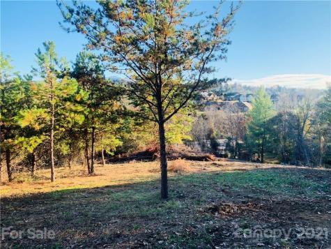 99999 Alpine Way Weaverville NC 28787