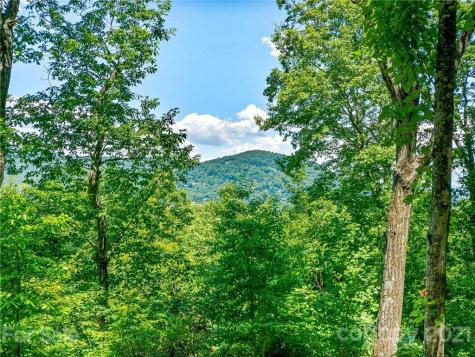 299 Secluded Hills Lane Arden NC 28704