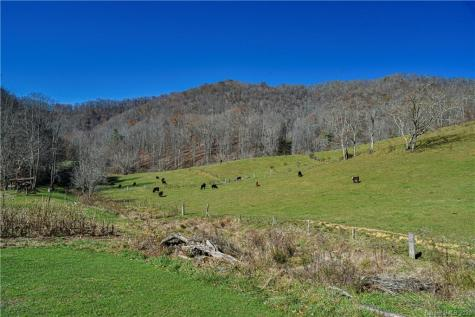 1142 Ponder Creek Road Mars Hill NC 28754