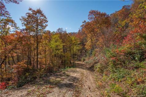 Tract 17 Sigogglin Trail Waynesville NC 28785