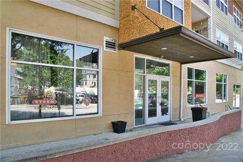 125 S Lexington Avenue Asheville NC 28801
