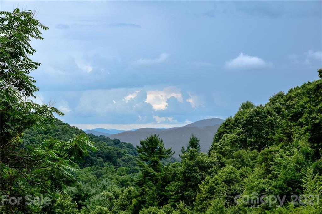 99999 Spring Creek Trail Asheville NC 28806