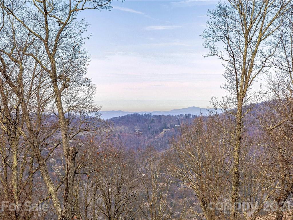 28 Mt Meadows Boulevard Asheville NC 28804
