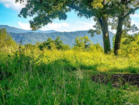 15 Wandering Oaks Way Asheville NC 28805