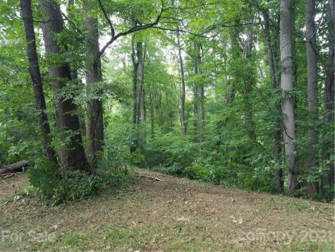 119 & 118 High Timber Trail Weaverville NC 28787