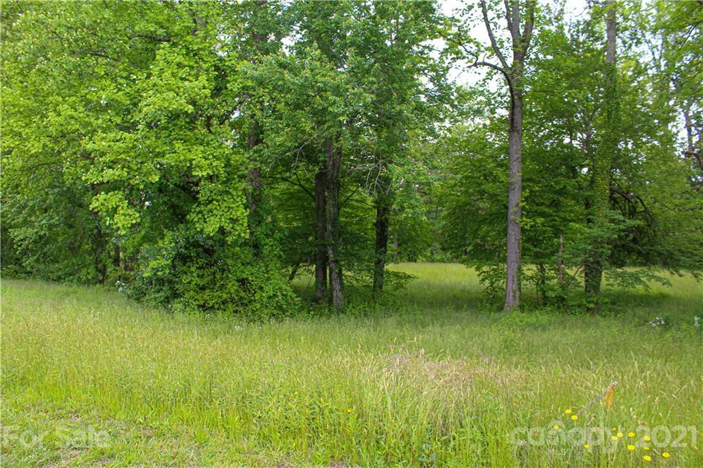 230 Almond Branch Drive Hendersonville NC 28791