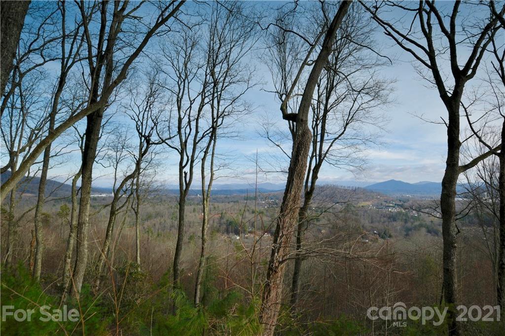 35 Ridge Pine Trail Arden NC 28704
