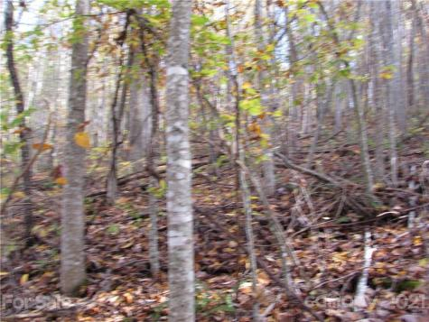 E- 8 Red Wolf Run None Mars Hill NC 28754
