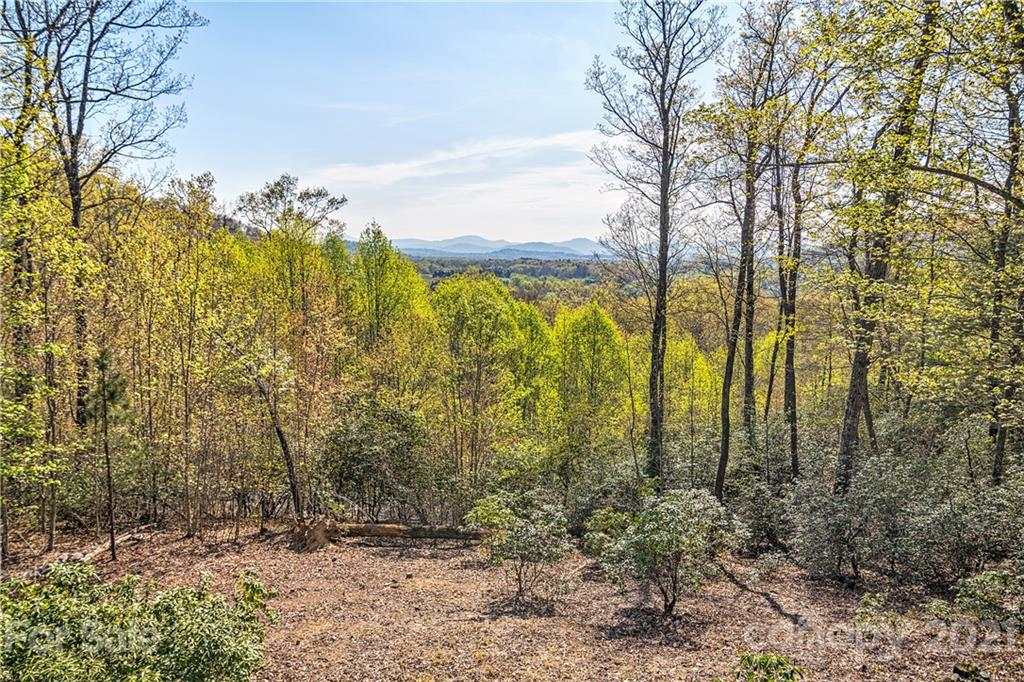 1907 Tree View Trail Arden NC 28704