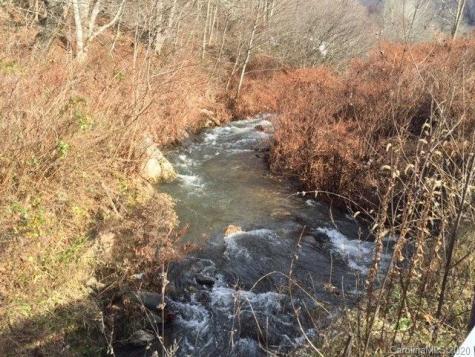 Cane Creek Cemetary Road Bakersville NC 28705