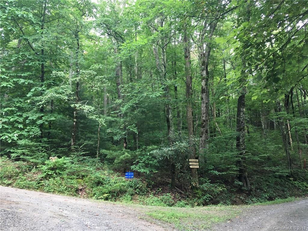 00 Ridge Vistas Road Gerton NC 28735