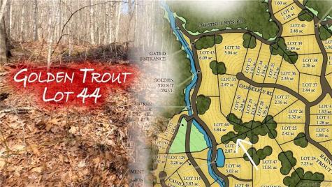 00 Golden Trout Drive Spruce Pine NC 28777