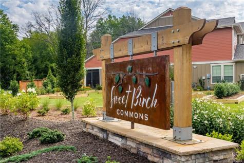 510 Sweet Birch Park Lane Black Mountain NC 28711