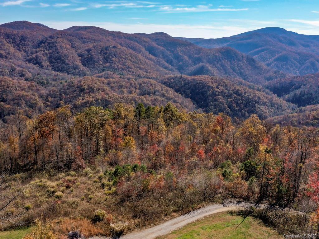 67 Autumn View Drive Gerton NC 28735