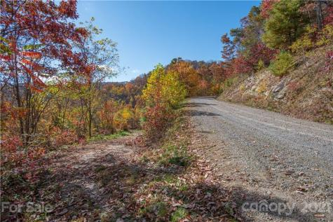 Tract 15 Sigogglin Trail Waynesville NC 28785