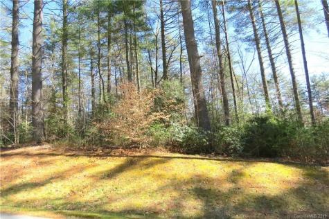 L2 Mountain Brook Trail Brevard NC 28712