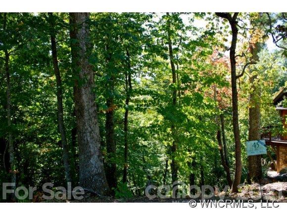 10 Whitman Lane Black Mountain NC 28711