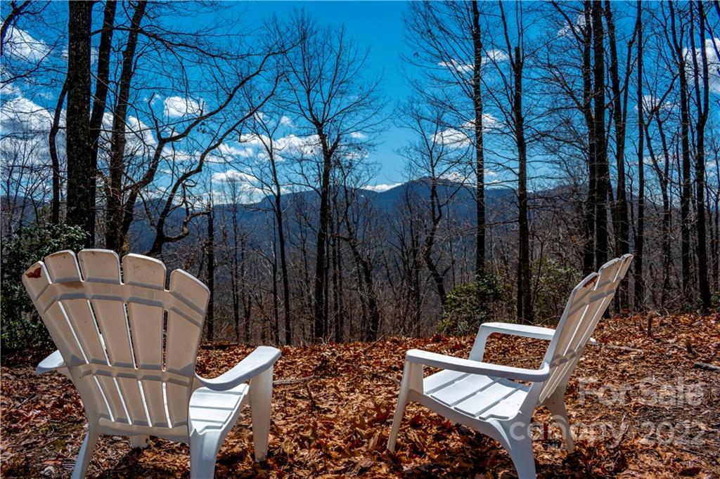 35 Lower Sand Branch Road Black Mountain NC 28711