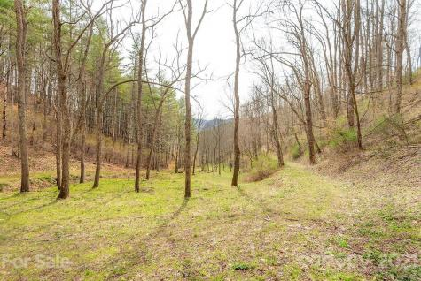 561 Piercy Road Green Mountain NC 28740