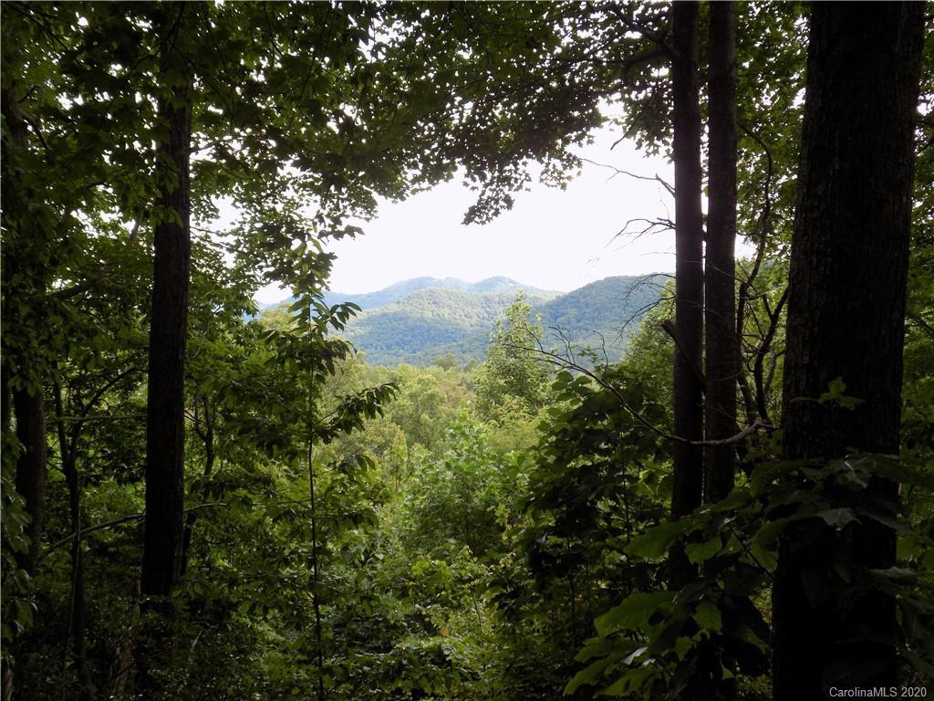 1088 Kestrel Lane Black Mountain NC 28711