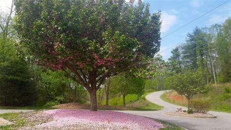 157 Waightstill Drive Arden NC 28704
