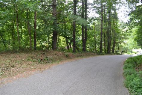 15 Woodland Terrace Asheville NC 28806